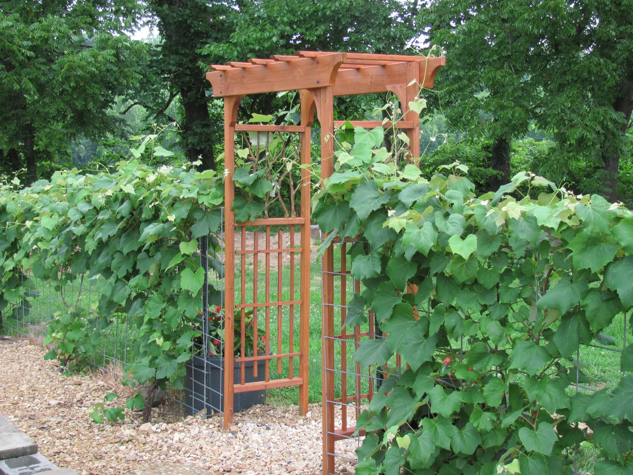 Building a garden arbor plans diy free download building for Garden trellis plans