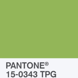 Pantone's Color of the Year 2017 – Greenery – is a fresh surprise!